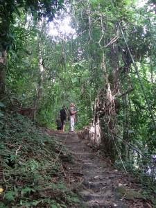 wanderung lampi nationalpark khao lak