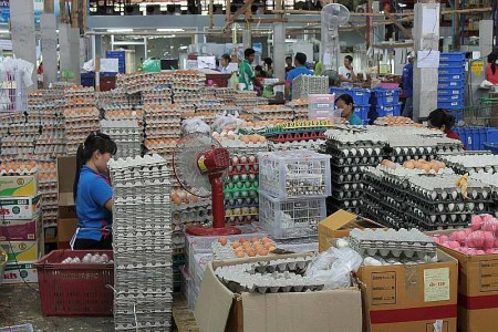 eier kaufen phuket thailand markt