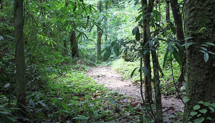 khao luang nationalpark thailand