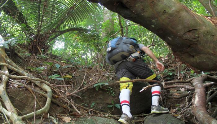 dschungel trekking blutegel schutz