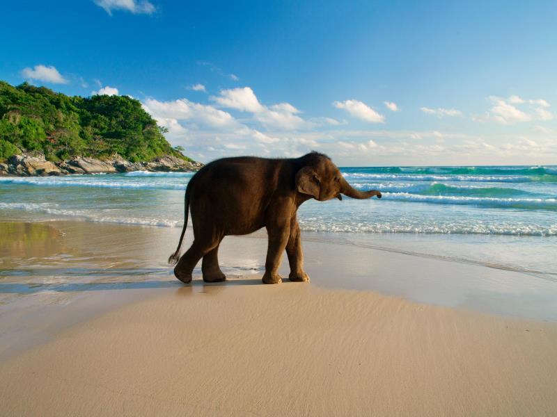 le meridien phuket karon beach
