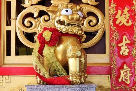 wächterlöwe guardian lion chinesischer tempel