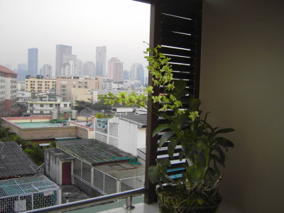 appartment in bangkok