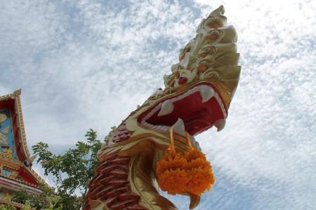 wat koh siray thailand drache