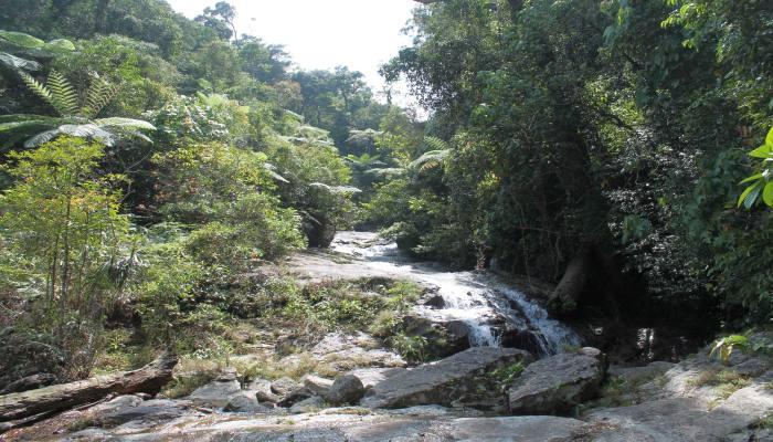 wasserfälle süden thailand dschungel trekking