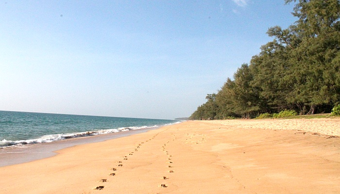 mai khao beach phuket 3