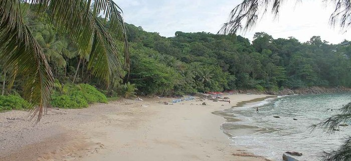 banana beach1