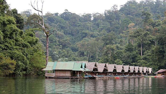 floesse khao sok see