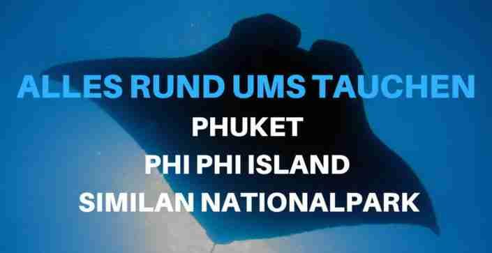 tauchen in phuket koh phi phi und similan island
