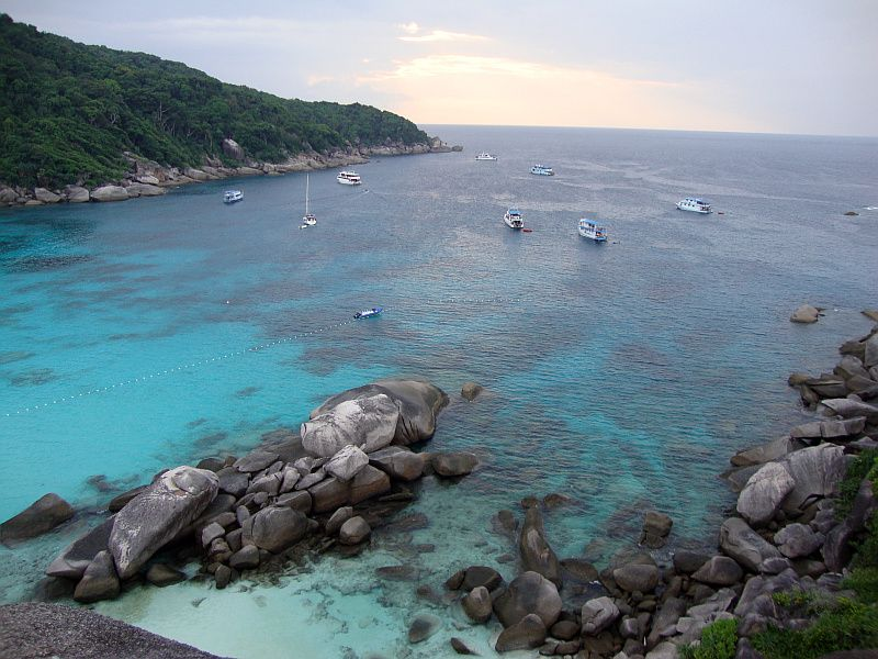 tauchen similans donald duck bay