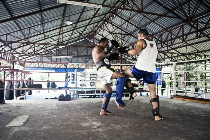 dragon muay thai phuket
