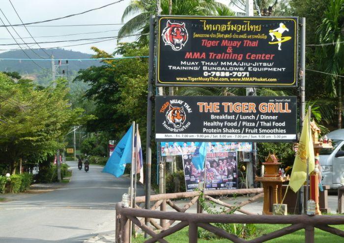 tiger muay thai phuket chalong